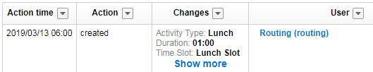 History tab of lunch activity shows column 'action' with value 'created'. Column 'User' shows value 'Routing'