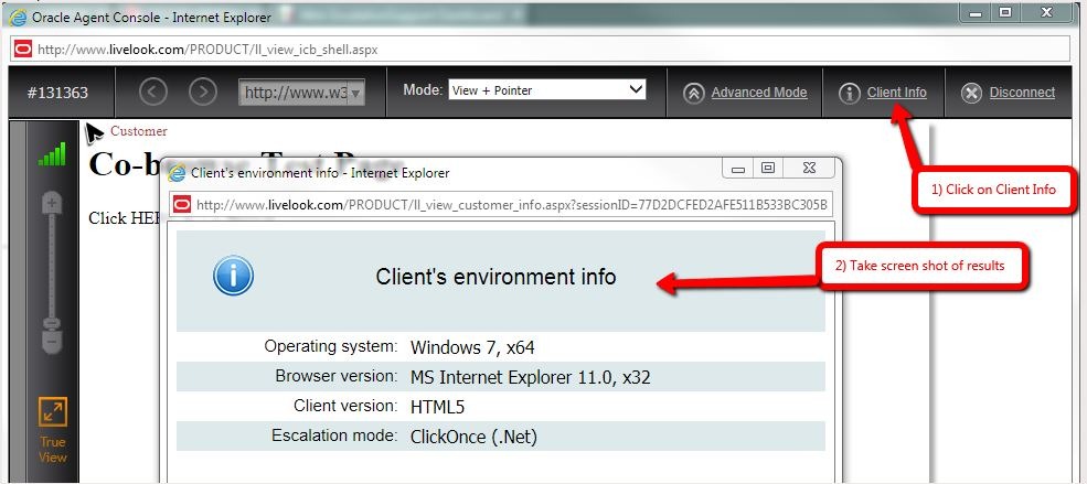Click the Client Info button to see Client's Environment Information